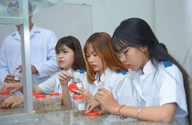Thông tin các trường Cao đẳng Dược ở TP.HCM